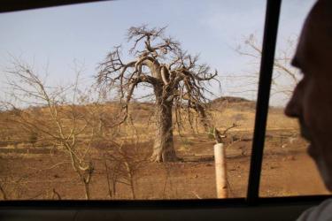 Sur la route de Dakar